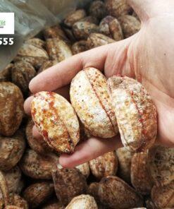 Chuối hột rừng giúp kích thích tiêu hóa, giảm táo bón hiệu quả